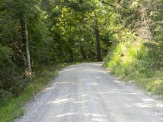 The back roads meander through shaded forests