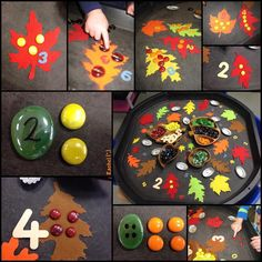 "Autumn counting from stimulatinglearningwithrachel ("",)"