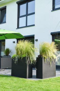 Für Sichtschutz auf der Terrasse sorgen diese Pflanzkübel Raumteiler. Mit frischen Gräsern bestückt, schützen die Pflanzgefäße vor neugierigen Blicken. Die Zeit im Garten kann so richtig genossen werden.