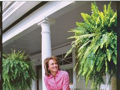 Five Great Ferns  NOTE Good tips on potted ferns