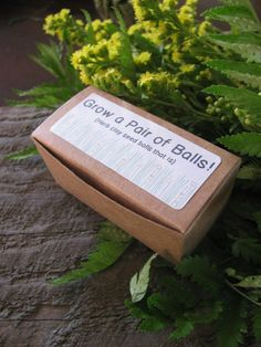 Grow a pair of balls-- gag gift- herb clay seed balls- oregano and basil. $4.50, via Etsy.