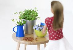 Grow cress in pots | Lundby