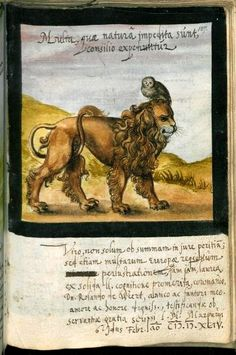 "an owl perched on a lion's head -- painted into the album of Rolandus de Weert, this page dated 1594. Leiden University MS LTK 1077, f.157r -- image c/o the Leiden University Library site.The Latin title means ""Many things that are impeded by nature, are attained by counsel"" -- so think on!"