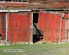 Broken wagon doors on an old red barn create a rustic image ready for the office or man cave. This print is now available on my Etsy Shop. Barn Doors Red Barn Doors Wagon Doors Old by AnneFreemanImages