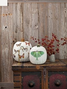Decorating pumpkin ideas