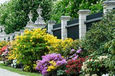 https://flic.kr/p/HiN1bV | Flowers in the Orangerie Garden at Schönbrunn Palace