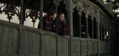 """Only A True """"Harry Potter"""" Fan Can Ace This Screenshot Quiz. I got 12/13!"""