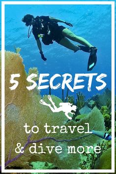 5 secrets to travel and dive more - World Adventure Divers