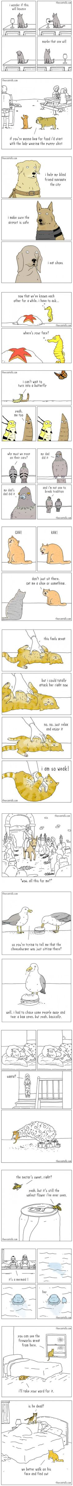 15 comics from an artist who understands animals perfectly (By Jimmy) - 9GAG