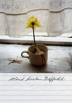 Wind broken Daffodil, Fine Art Print by KayLynn Deveney.  (From the Day-to-Day Life of Albert Hastings).