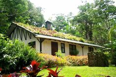Matagalpa, Nicaragua This is where I envision Chase McDermott living.