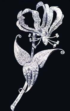 Queen Elizabeth II's spectacular Rhodesian Flame Lily Brooch. She famously wore this brooch when she first arrived in England as the new Queen (she was in South Africa when King George VI died) ..... per Svedipie
