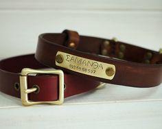 Dog Collar, Leather Dog Collar, Dog Collar Leather, Personalized Dog Collar, Handmade Dog Collar, Dog Collar Personalized, Dog Name Plate by VacForPets on Etsy