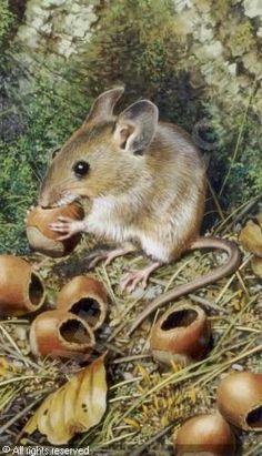 rats in paintings | BRENDERS Carl,A Pair of paintings depicting mice,Leslie Hindman ...