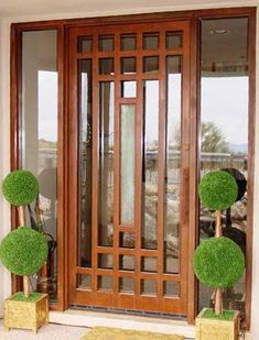 Glass Front Door.  This is much like ours.  Why not make a screen door just like this?!
