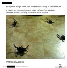 Crab lord, OMG I can't stop laughing!!!!!!