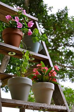 [My Vertical Garden] - Bolt the pots to the steps so they won't blow over on a windy day - great idea!