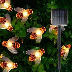 Features: 🌸🐝Solar Powered & Intelligent Sensor: The solar bee lights no need to charge and batteries. Energy conservation and environmental protection. Garden solar lights are equipped with automatic sensor panels, just exposed to sunshine during the day, and it begins to light up at night automatically. 🌸🐝2 Switches & 8 Different Modes : The solar string lights only have On/Off button and mode button ,very easy to use. Press mode button selects 8 different flashing modes to satisfy Solar Fairy Lights, Solar String Lights, String Lights Outdoor, Hanging Lights, Honey Bee Garden, Led Color, Luz Solar, Outdoor Garden Lighting, Light Garland