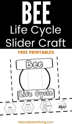 This Life Cycle of a Honey Bee Free Printable is a great way to encourage learning about bees. Enjoy science and nature with the bees and this free preschool printable. Animal Activities For Kids, Preschool Learning Activities, Free Preschool, Hands On Activities, Writing Prompts For Kids, Writing A Book, Kids Writing, Cycle For Kids, Bee Life Cycle