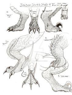 Wie zeichnet man Dragon Claws Jiragon Arm und Klaue Skizzen - New Sites Creature Drawings, Animal Drawings, Art Drawings, Dragon Drawings, Fantasy Drawings, Fantasy Creatures, Mythical Creatures, Dragon Anatomy, Dragon Sketch