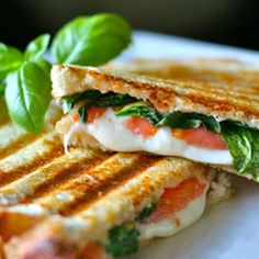 Website full of Panini recipes