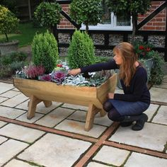 Mini Manger Trough Planters are great to grow your own vegetables, salad and herbs on the patio and can be used as an attractive flower planter. Plant Troughs, Trough Planters, Wooden Planters, Flower Planters, Raised Planter Beds, Raised Beds, Fine Sand, Houses