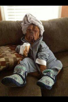 Lazy Friday.... Every women's dream!