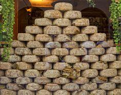 """Pecorino di Pienza"" by Sanjin Jukic, Pecorino Cheese, Milk And Cheese, Queso, Tuscany, Italian Recipes, Sheep, The Good Place, Memories, Cheese"