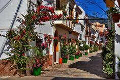 Calle de Estepona, Málaga, Costa del Sol, Andalucía, Spain.