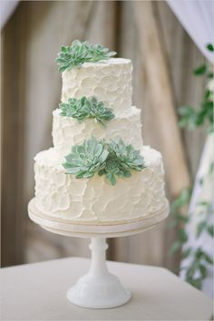 rustic white wedding cake with succulents