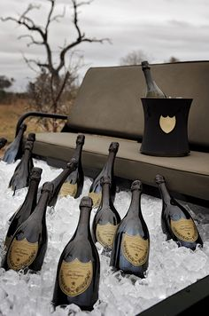 Just before midnight on the eve of 2018, I will for the 9th year in a row at Londolozi, pour 100 glasses of South Africa's finest Méthode Cap Classique for our guests to celebrate with as the clock strikes 12. Ensuring that these 100 glasses are all poured timeously and that they are perfectly chilled has become a ritual of sorts; a way to wash away the old year and provide focus for the New. Pondering on this task ahead got me wondering – why do we celebrate the New Year with Champagne?...