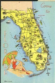 20 Best Florida & Matlacha images