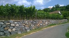 Hungarian wine news and events about the 22 wine regions of Hungary. Volcano, Hungary, Wines, Sidewalk, Side Walkway, Walkway, Volcanoes, Walkways, Pavement