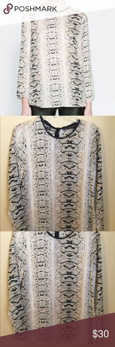Zara snakeskin blouse with scallop detail Excellent condition - worn once. One of my favorite tops, very high quality. Zara Tops Blouses
