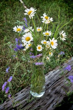 Wildflower Arrangements | Wildflower Arrangements For Outdoor Event | Small Town Social - A ...