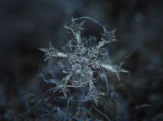 Queste immagini sono reali, al 100%. Sono opere del talentuoso fotografo russo Alexey Kljatov. Queste incredibili macro di fiocchi di neve, vi faranno riflettere sulla grandezza del microcosmo.