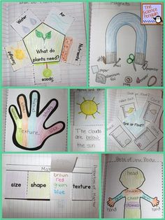 Kindergarten Interactive Science Notebook Activities $