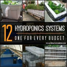 15 Hydroponics System Designs To Get Your Brain Going! | It's easy to build your own hydroponics system when you have this many to copy from.
