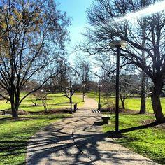 Campus sunshine at Indiana University