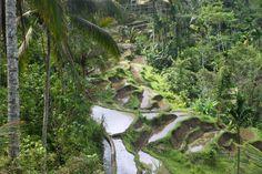 Adventurous Miriam | 20 amazing things to do in Bali | http://adventurousmiriam.com
