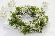 living4media - wreath of gypsophila and myrtle