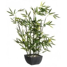 produit botanic bambou artificiel avec pot h76 cm vertnoir thme - Fly Bambou