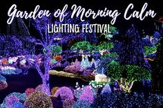 With the Christmas period drawing to a close, we decided to get one last festive fix at the lighting festival held at the Garden of Morning Calm; a vast botanical garden that's transformed into a Winter Wonderland after dark.