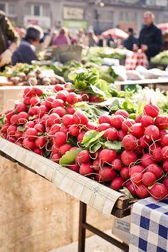 Fresh radishes at Farmer's market
