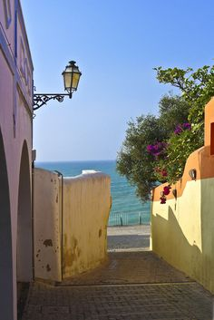pinner said:Picturesque streets of Albufeira, Algarve Coast You wish to get lost there forever. Walking, wandering, discovering, tasting these irresistible regional sweets and bread . With great strong coffee or maybe a good glass of local white wine? Algarve, What A Wonderful World, Beautiful World, Beautiful Places, The Places Youll Go, Places To Visit, Famous Places, Spain And Portugal, Old Town
