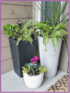 front door planter ideas modern contemporary planters for front porch with tropical flowers front porch planter ideas Front Porch Flowers, Summer Front Porches, Contemporary Planters, Contemporary Front Doors, Modern Contemporary, Modern Design, Modern Planters, Front Porch Planters, Front Porch Design