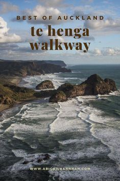 The track stretches from Bethells Beach to Muriwai and meanders along the coastal cliffs. Looking out across the Tasman Sea, the walkway has stunning lookout points as you see the wild waves crashing on black sand beaches, at the bottom of the cliffs and along the Western coastline.