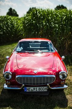 Volvo P1800...living in Sweden as child in the 50's I dreamed to own one of these..the move to America changed my dream...I still like this car.