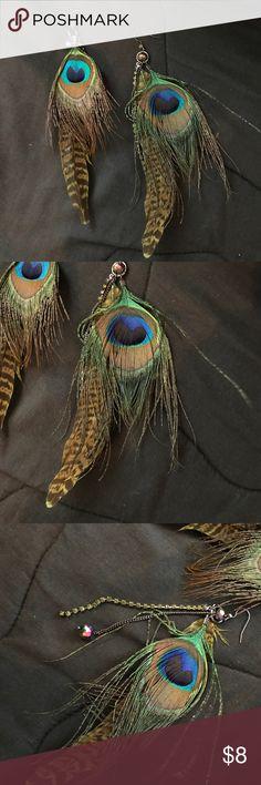 3 for 20❗️Peacock Earrings Cute earrings for everyday wear! Jewelry Earrings