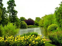 Lake in park - lovely, reflection, calm, park, nice, nature, grass, tranquil, beautiful, pond, greenery, green, flowers, serenity, quiet